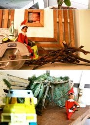 elf on the shelf : a love story