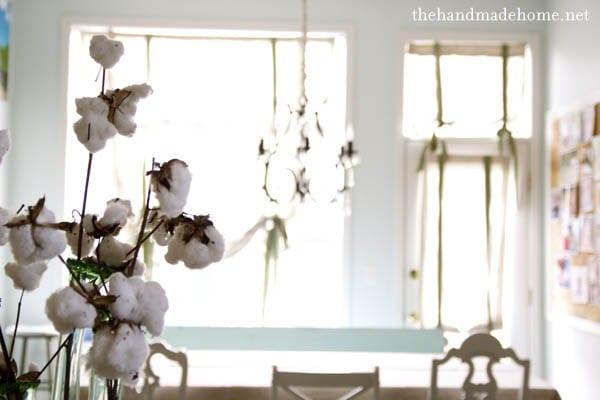 cotton_in_kitchen