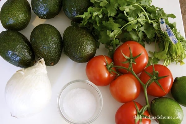 ingredients_for_guacamole