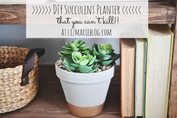 DIY_succulent_planter