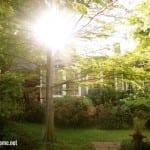 beautiful_house.jpg.pagespeed.ce.QJ-1Ztc5xz