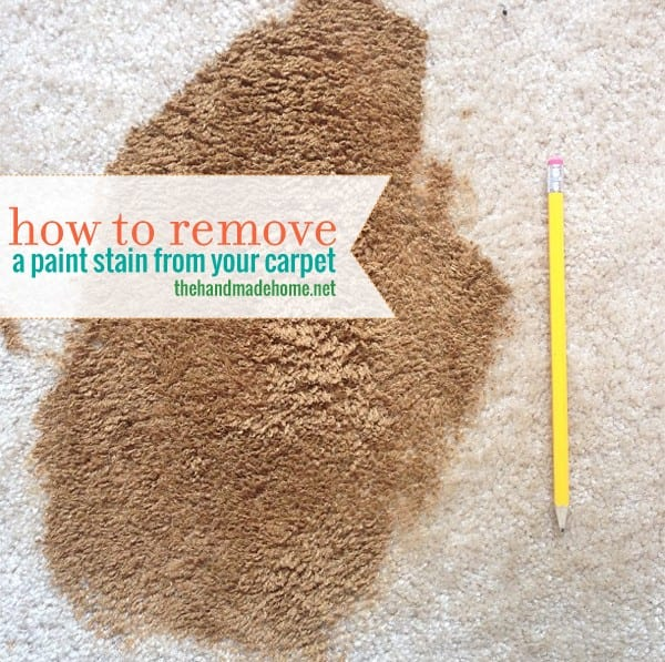 Remove paint from your carpet - Remove carpet stains ...