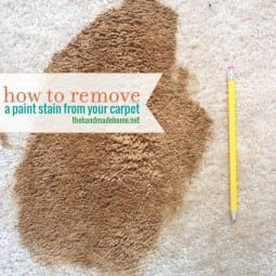 how to remove paint from your carpet