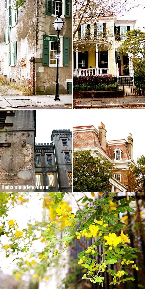 charleston_architecture_vegetation