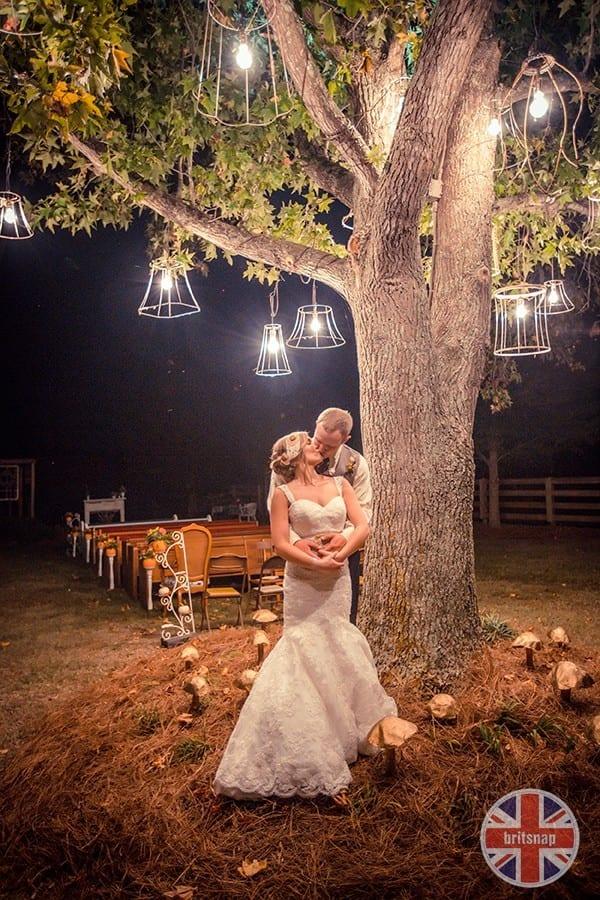 tree_lights
