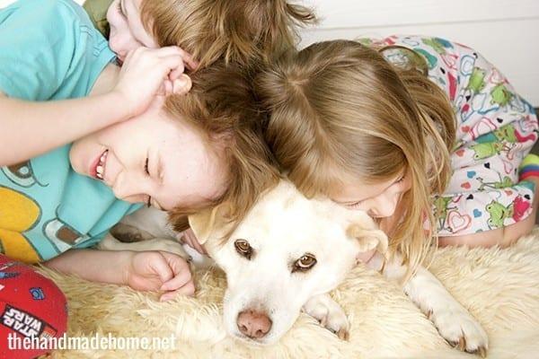 dog_family_the_handmade_home