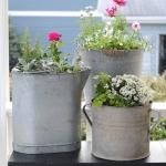 easy potted plant arrangements