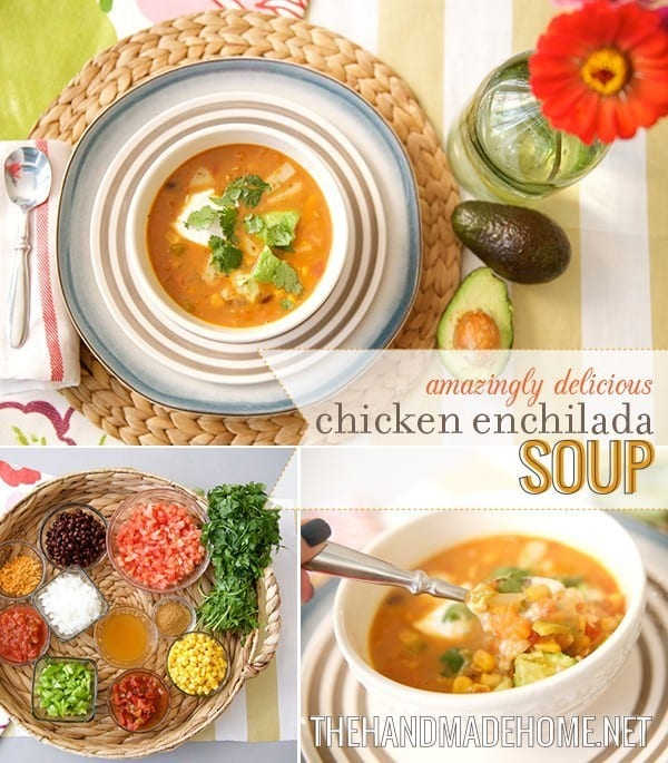 chicken enchilada soup iii perfect chicken enchilada soup from chicken ...
