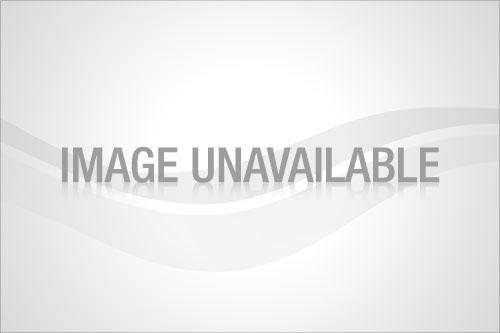 497x697xchristmascards.jpg.pagespeed.ic.VJBLy9lb_u
