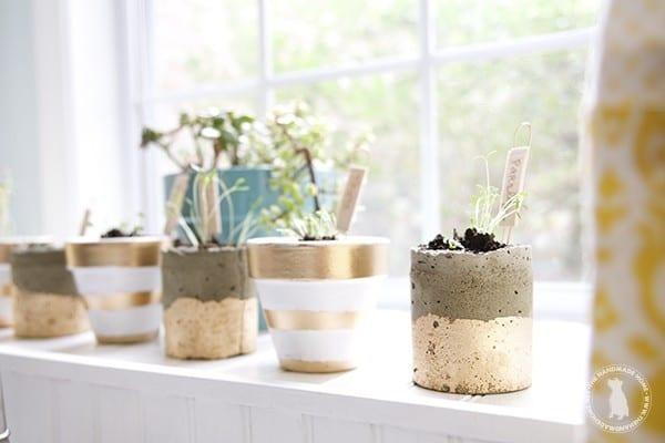diy_windowsill_plant_markers