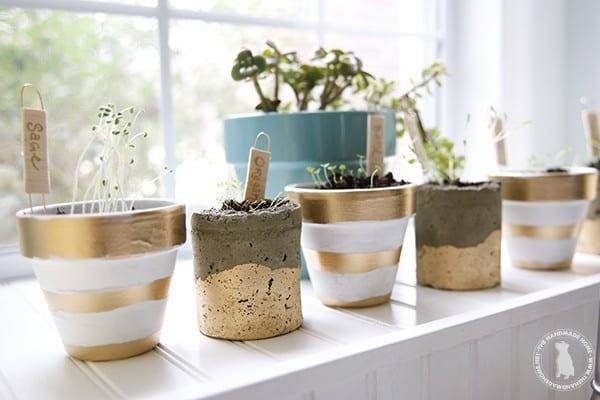 herb_garden_how_to