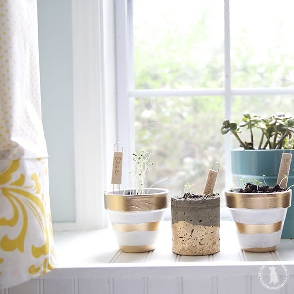 make_your_own_plant_markers