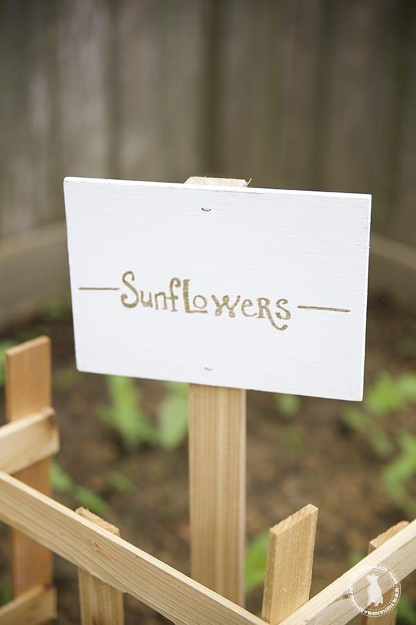 garden_sunflowers_sign