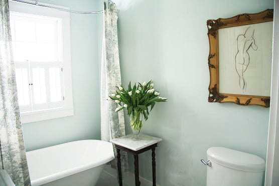 Toile Bathroom Ideas: Choosing Base Colors For The Home