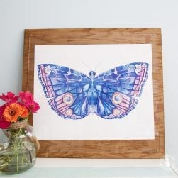 butterfly_prints