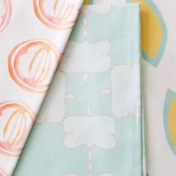 coral_and_mint_fabric_options