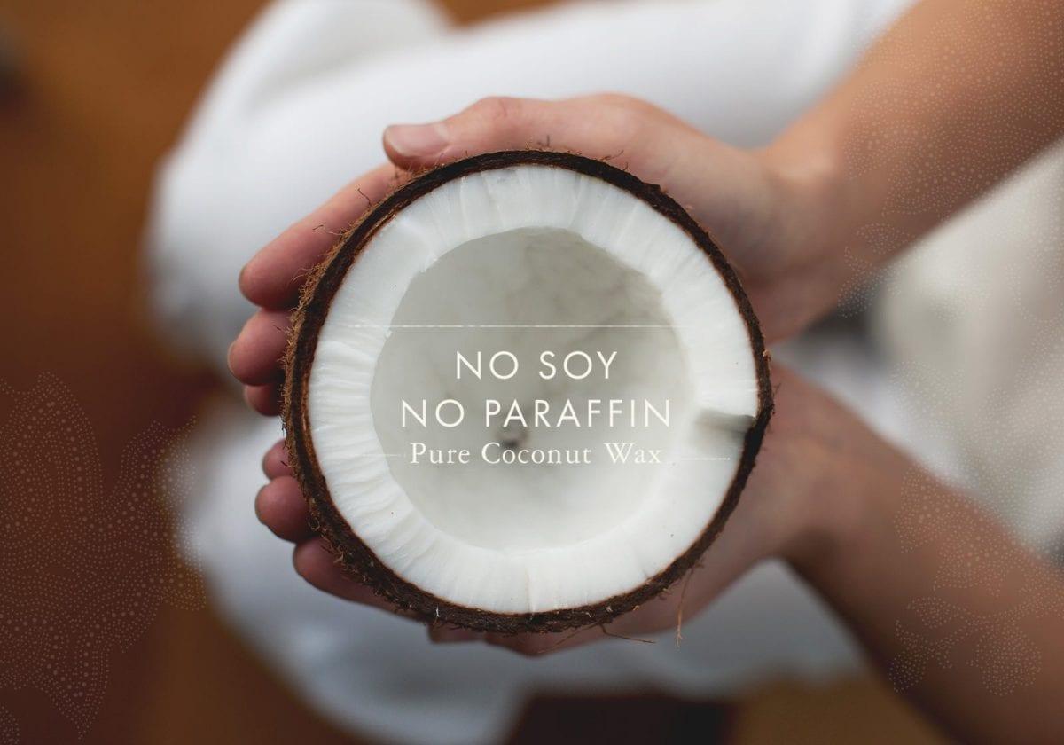no-paraffin-slide