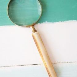 magnifyingglass3