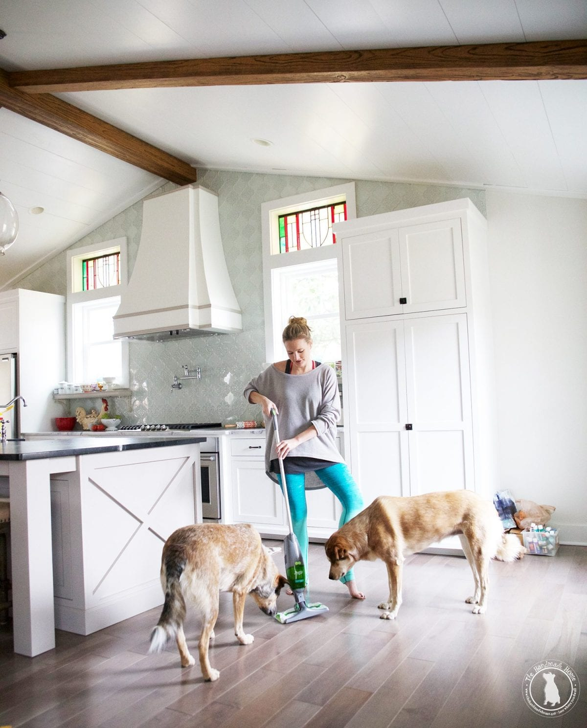How To Keep Your House Clean With Two Massive Dogs The