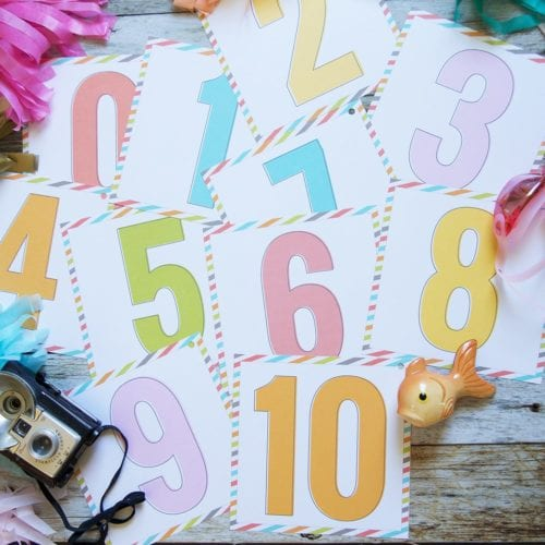 free score card printables {number cards}