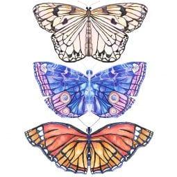 free butterfly art
