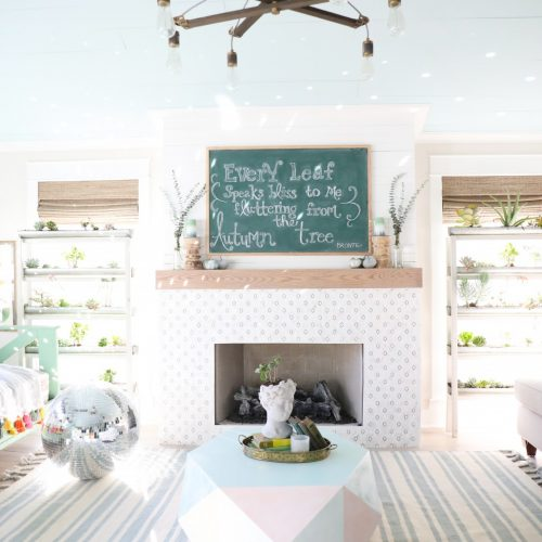 easy diy succulent shelves